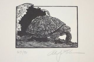 TORTOISES. SIX POEMS BY D. H. LAWRENCE.