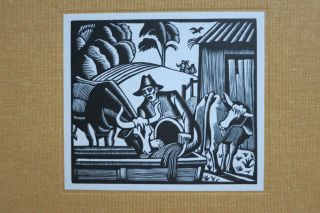 THE WOOD ENGRAVINGS OF ETHELBERT WHITE. Hilary Chapman