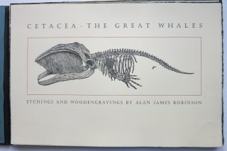 CETACEA. THE GREAT WHALES.