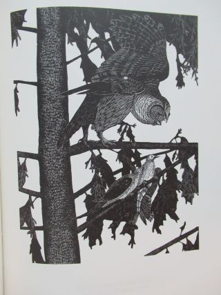 YTWOK. A Chronological Miscellany of Images Engraved in Wood by Gaylord Schanilec For Books During the Second Millennium Including the First and Last.